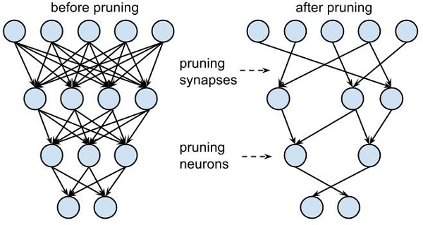 Deep Compression and Pruning for Machine Learning in AI Self