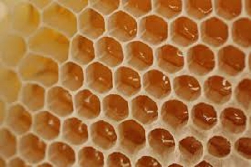 Social Media Is Causing Trypophobia Ai Trends